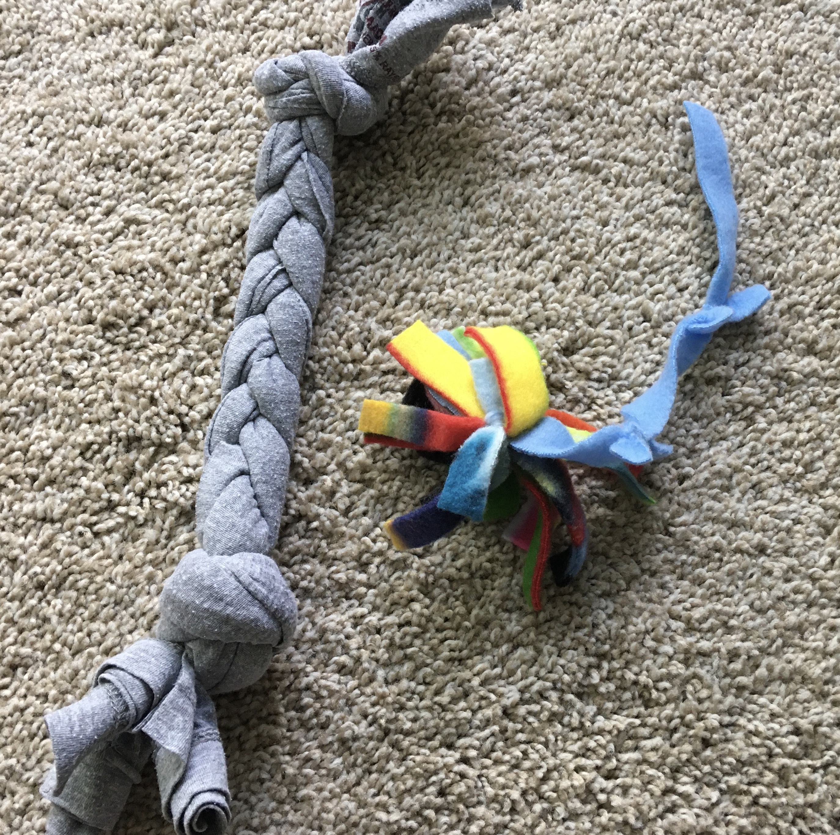Animal Shelter Cat and Dog Toy Craft
