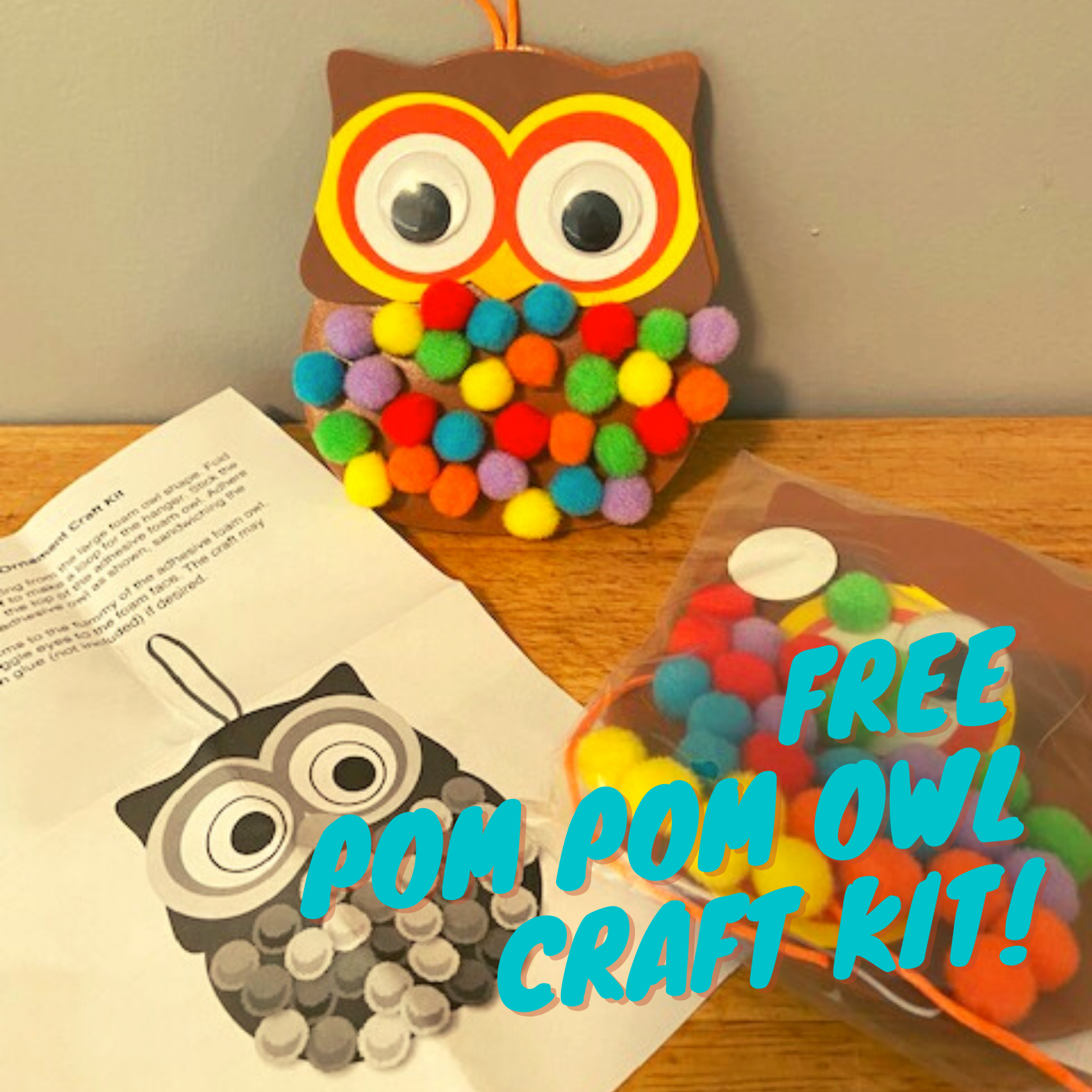 Pompom Owl Craft Kit