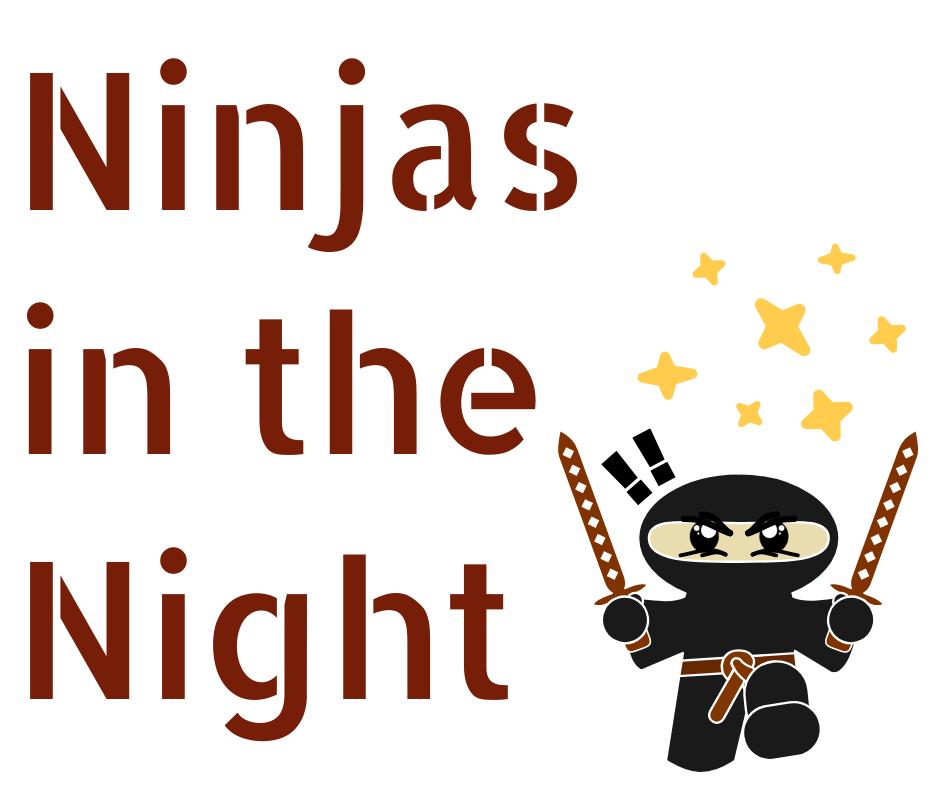 Ninjas in the Night