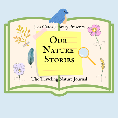 Our Nature Stories: The Traveling Nature Journal