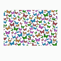 Children's Grab and Go Activity Kit: Create Your Own Butterfly
