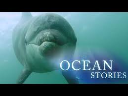 Story Time: Oceans in Motion