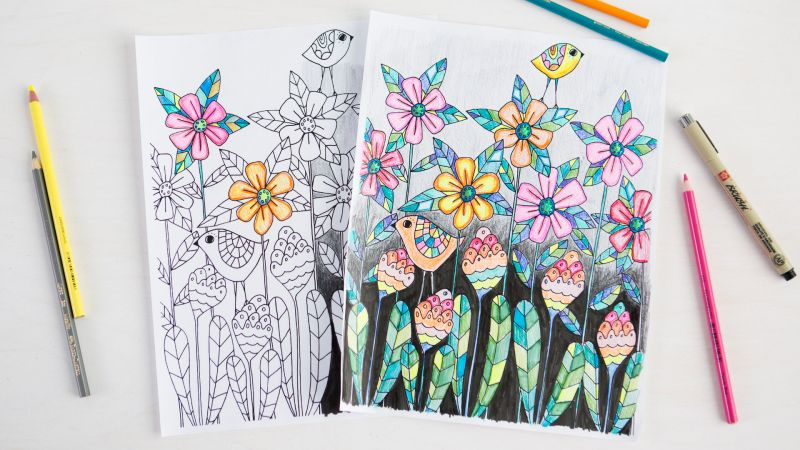 Coloring for the Whole Family