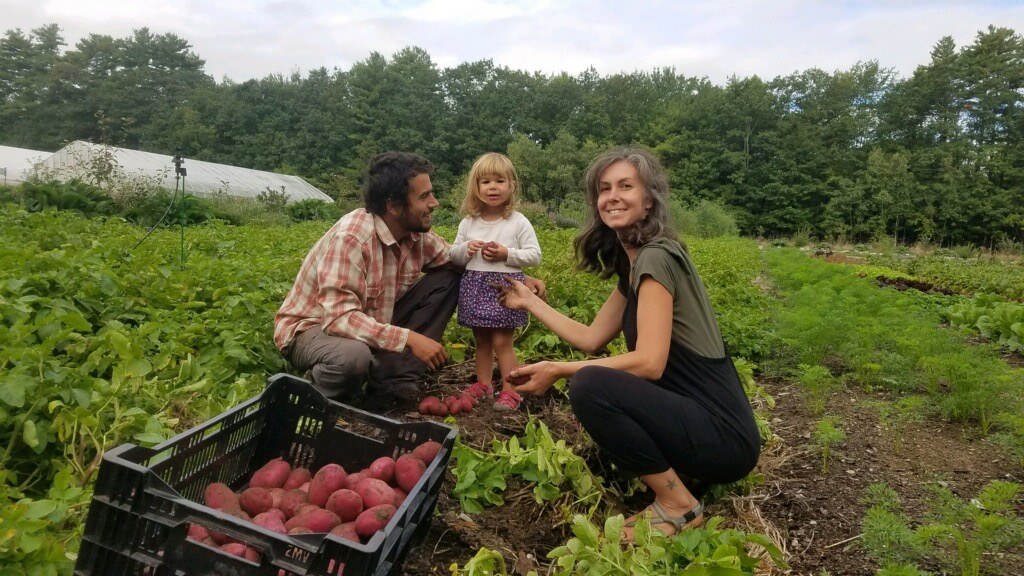 Growing Ideas: Regenerative Agriculture Meets Clayfield Farm