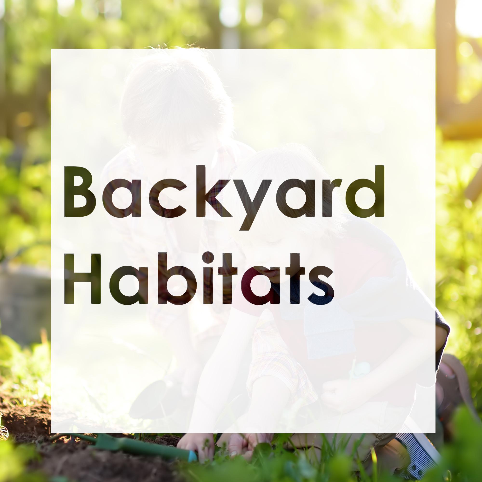 Backyard Habitats