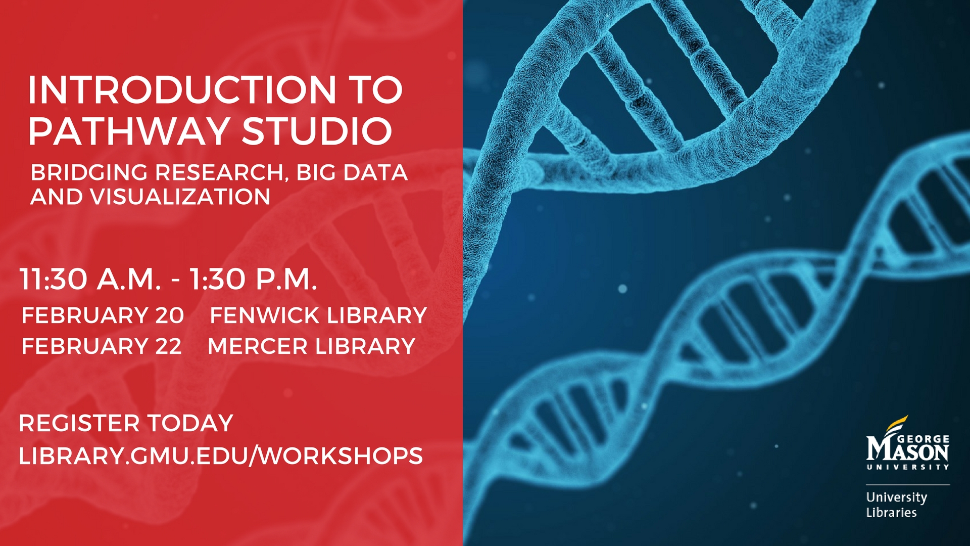 Introduction to Pathway Studio: Bridging Research, Big Data, and Visualization