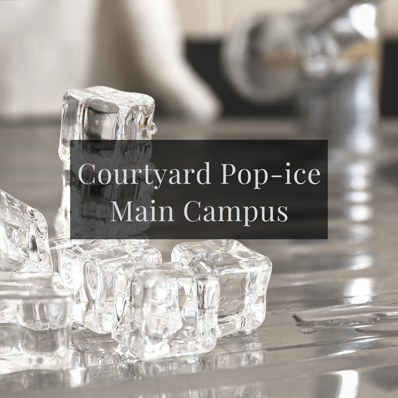 Courtyard Pop-ice