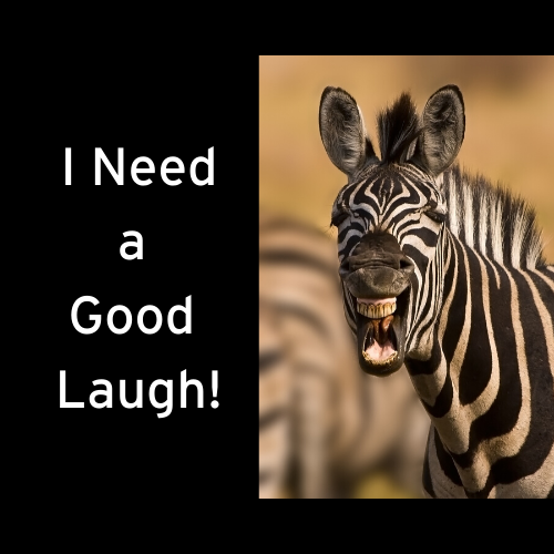 Healthful Laughter in Difficult Times