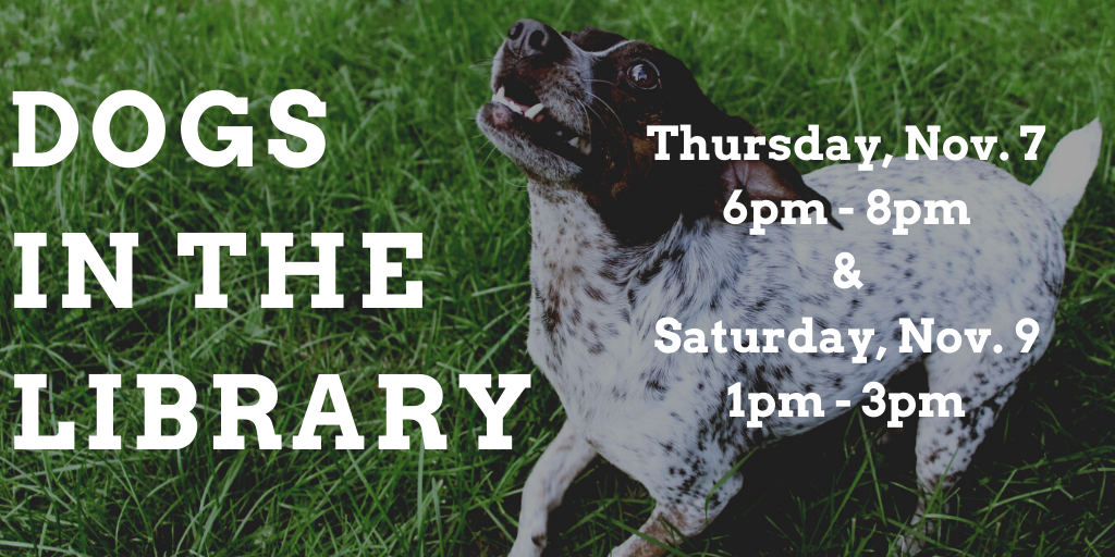 Pet Therapy in the Popular Reading Area