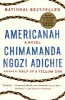 """Reading on the Pike: """"Americanah"""""""
